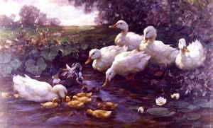 "Photo of ""DUCKS AND DUCKLINGS ON A POND"" by ALEXANDER MAX KOESTER"