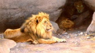 "Photo of ""LION OUTSIDE HIS DEN"" by WILHELM KUHNERT"