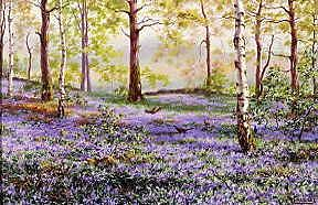 "Photo of ""PHEASANTS IN THE BLUEBELL WOOD"" by P.F. ROBINET"